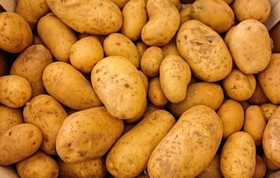 women mimic consumption of potatoes when trying to conceive