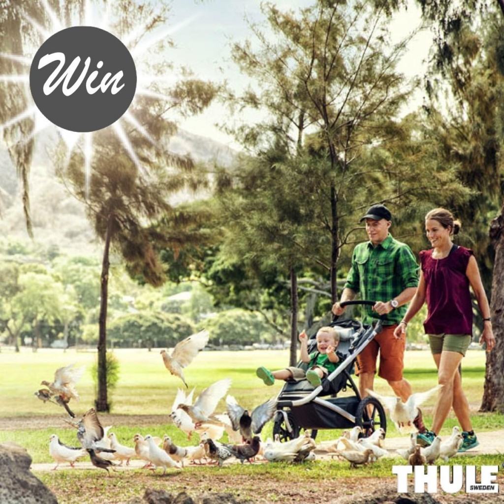 Thule6