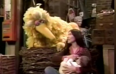 big bird breastfeeding