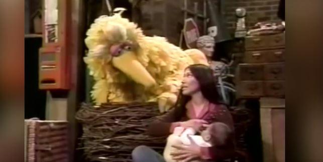 big bird breastfeeding